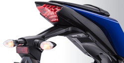 Full LED Tail Light R25